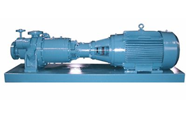 Roth Magnetic Drive Pumps